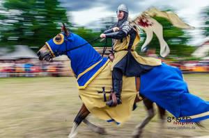24. Burgfest - Mittelalterspektakel