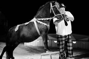 Gastspiel Zirkus Alamos